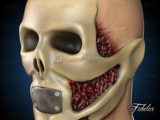 skeleton-3d-model-36440-801621 (1)